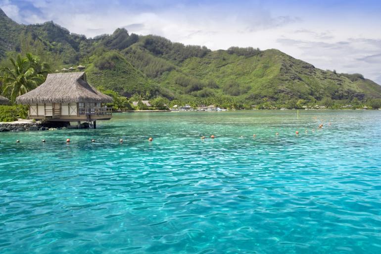 Fiji image 7