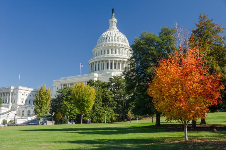 Washington D.C. image 1