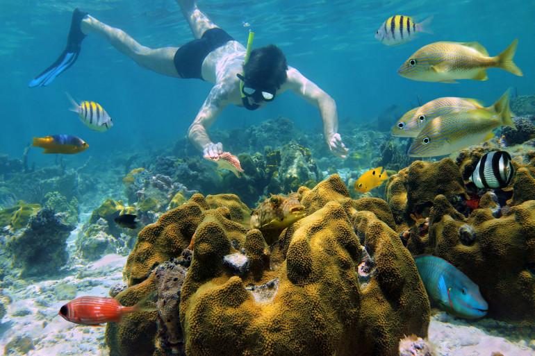 Cancun image 2