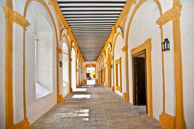 Seville image 5