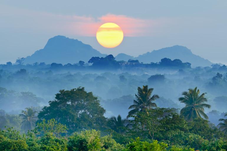 Sri Lanka image 1