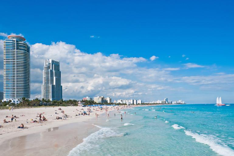 Miami image 3