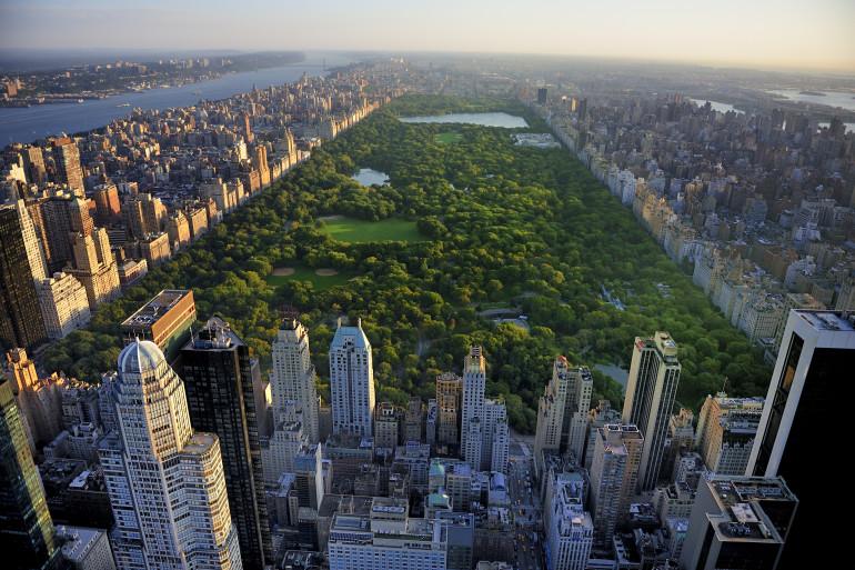 New York image 5