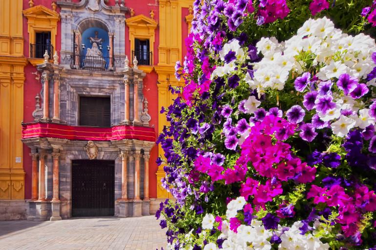 Malaga image 3