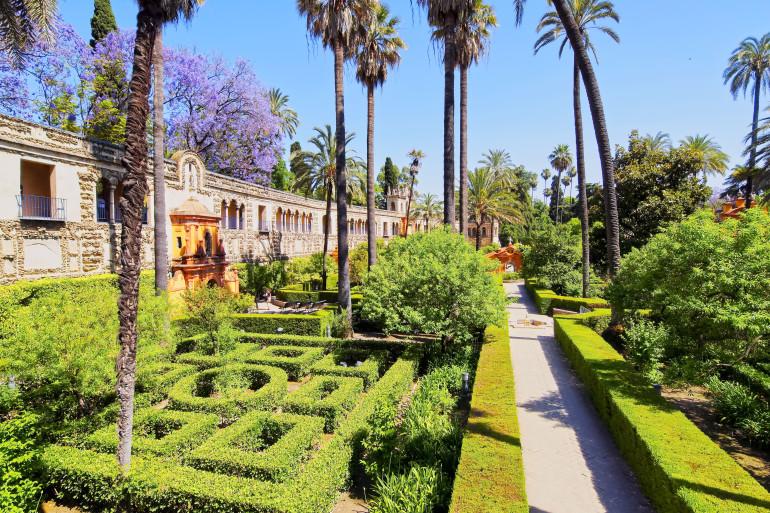 Seville image 7