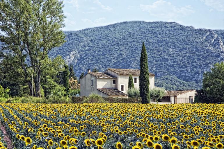 Provence image 1