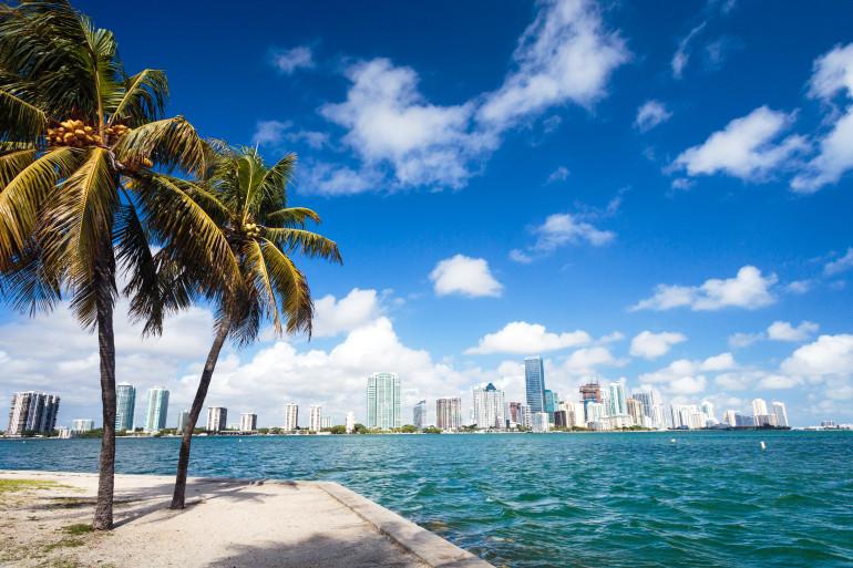 Miami image 5