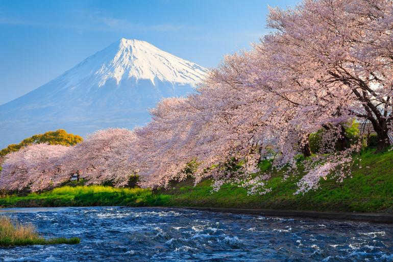 Tokyo image 5