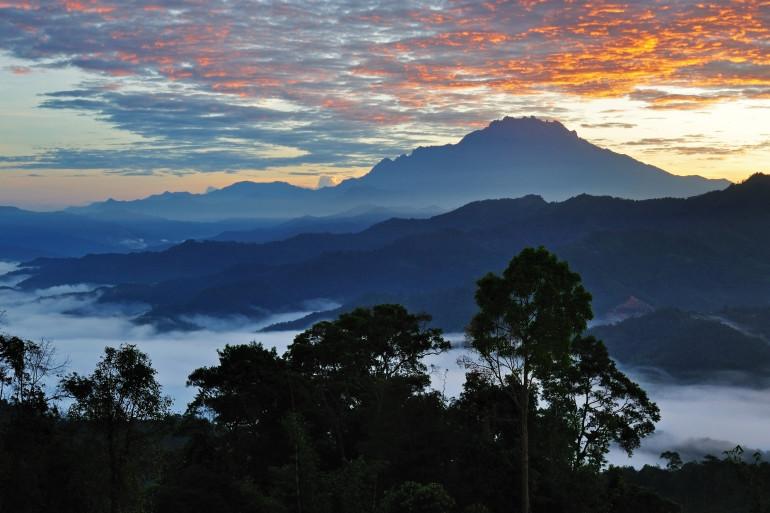 Borneo image 4