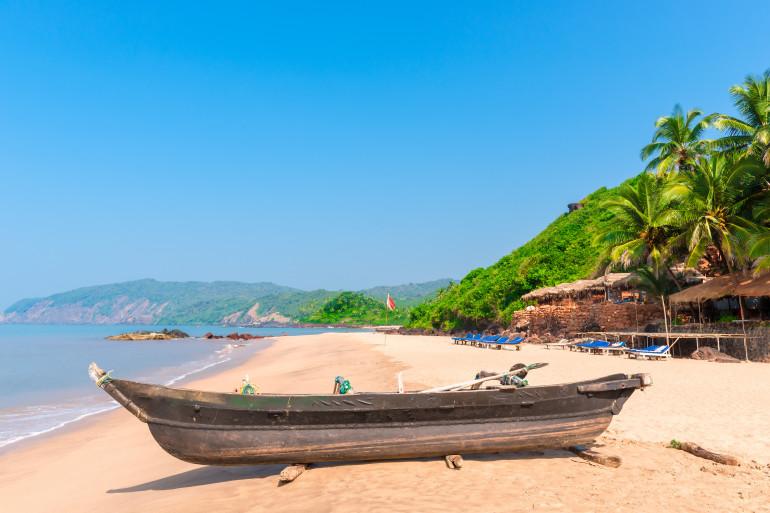 Goa image 7