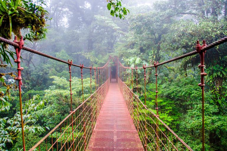 Costa Rica image 6