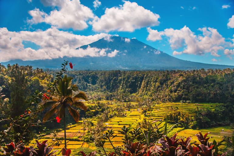 Bali image 8