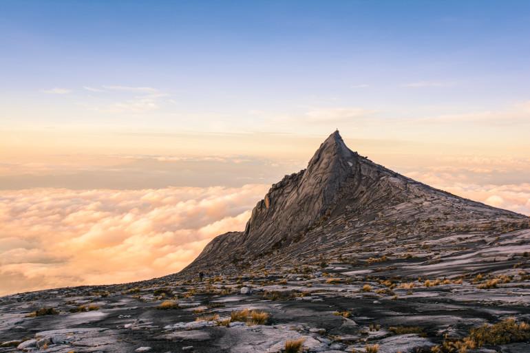 Borneo image 5