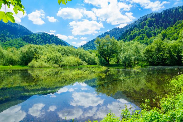 Montenegro image 8