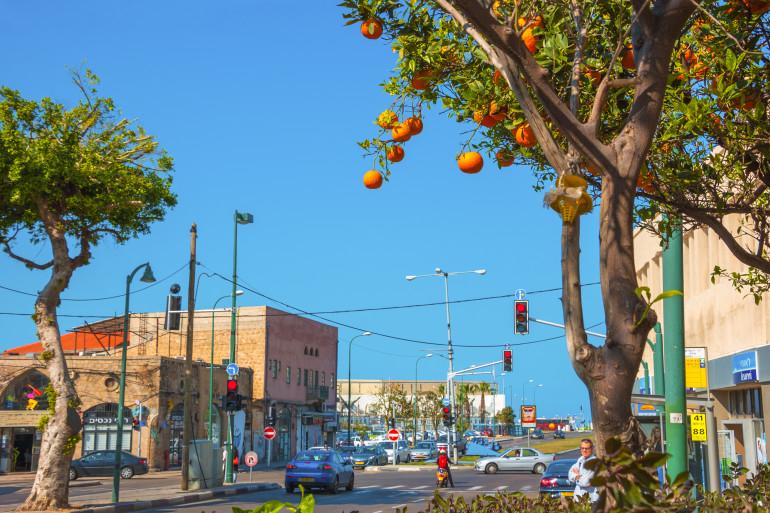 Tel Aviv image 13