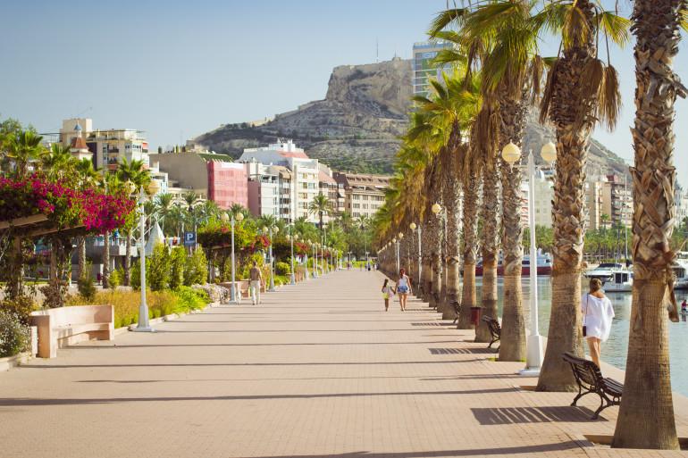 Alicante image 4