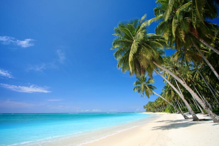 Hawaii image 18