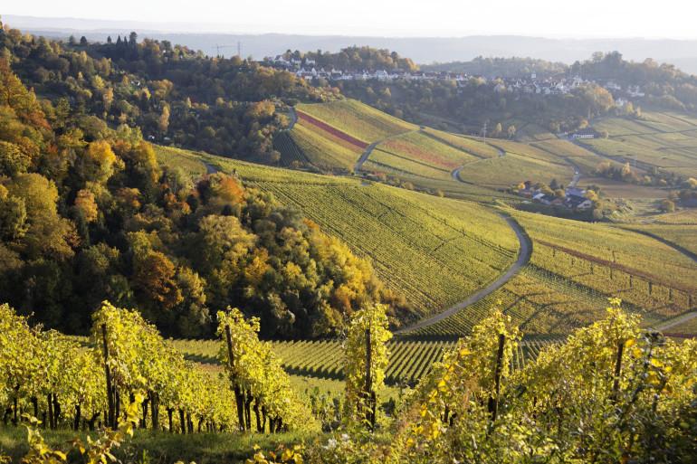 Stuttgart image 12