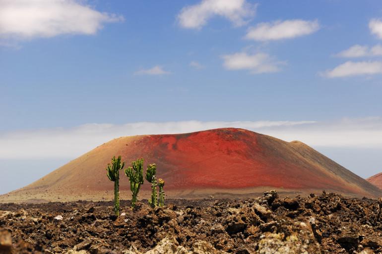 Lanzarote image 8