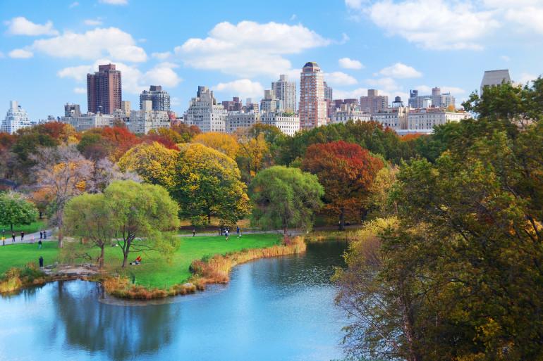 New York image 8