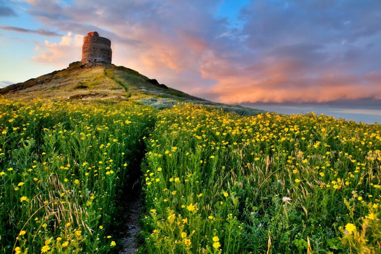 Sardinia image 12
